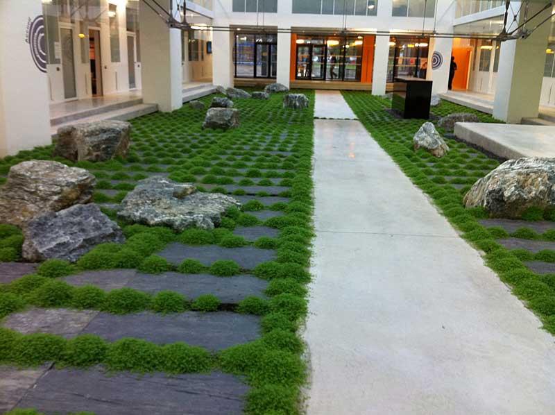 cr ation d 39 un jardin d 39 int rieur pau 64 despaux cr ation jardins. Black Bedroom Furniture Sets. Home Design Ideas